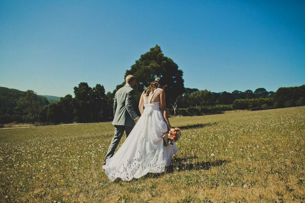 wedding at Red Hill Lavender Farm
