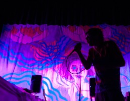 Avey Tare / Animal Collective
